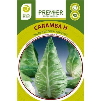 Baltagūžiai kopūstai CARAMBA H, 30 sėklų