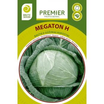 Baltagūžiai kopūstai MEGATON H, 45 sėklos
