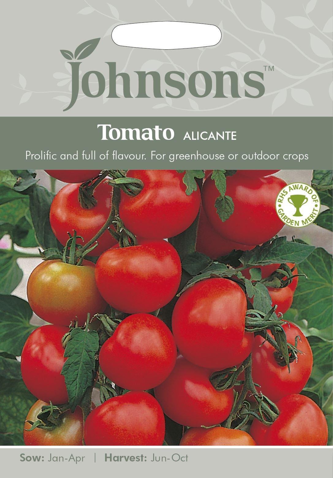 Valgomieji pomidorai Alicante 50s