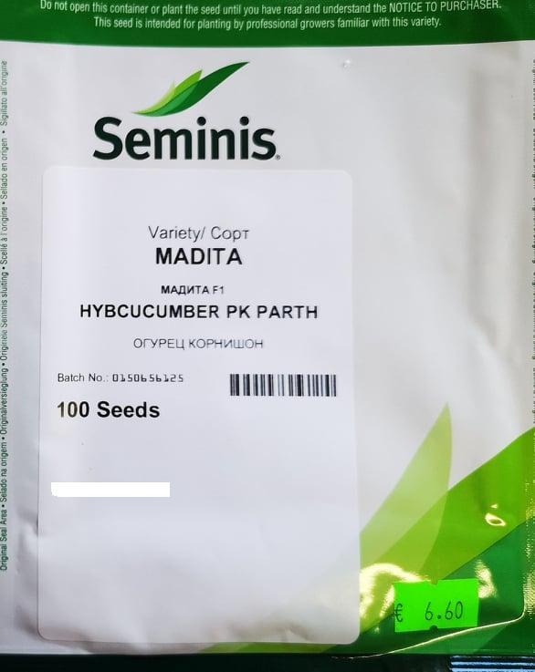 Paprastieji trumpavaisiai agurkai Madita F1(H)
