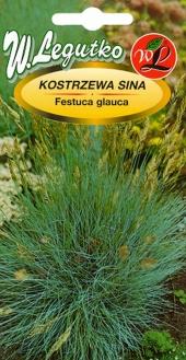 Melsvasisi eraičinas (FESTUCA GLAUCA)  Sėklų 0,2g