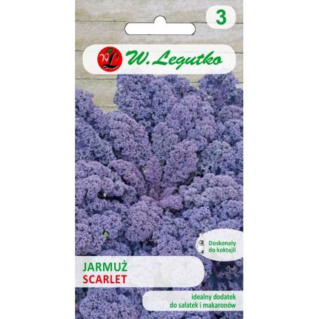 Garbanotieji kopūstai Scarlet ( Brassica oleracea convar. acephala var. sabellica)  Sėklų 1g