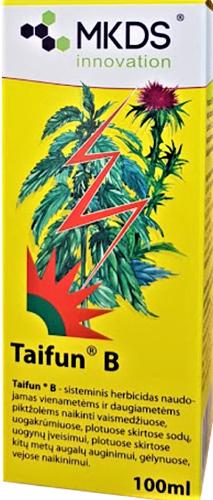 Taifun B