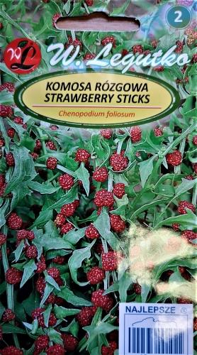 Gausialapės balandos (žemuoginiai špinatai) (lot. Chenopodium foliosum) Sėklų 0,1g