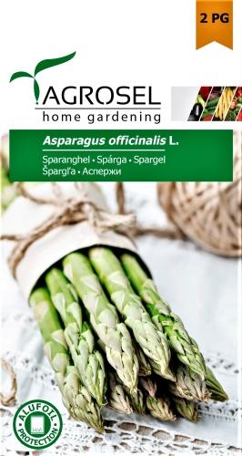 Vaistiniai smidrai (šparagai) (lot. Asparagus officinalis) Sėklų 2g