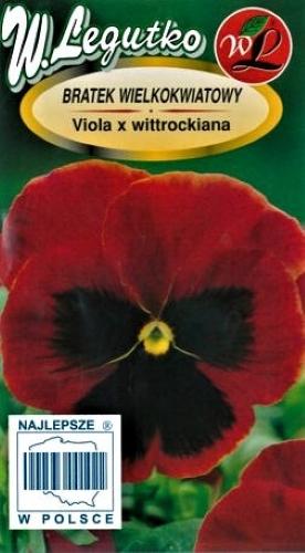 Darželinė našlaitė Abendglut  (lot. Viola wittrockiana) Sėklų 0,5g