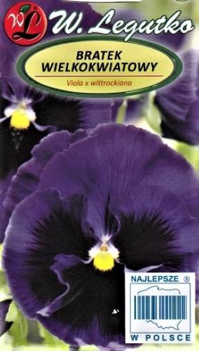 Darželinė našlaitė Bergacht (lot. Viola wittrockiana) Sėklų 0,5g