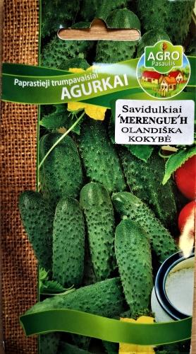 Paprastieji trumpavaisiai agurkai Merengue H 15s