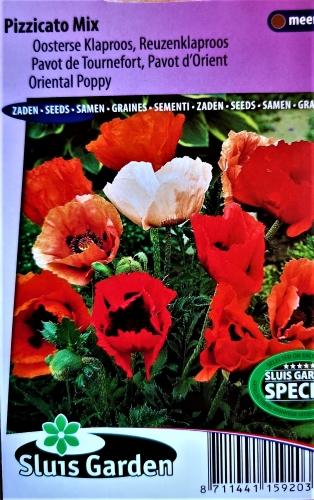 Rytinė aguona (ŽEMAŪGĖ) Pizzicato Mix (apaver orientale) 350s