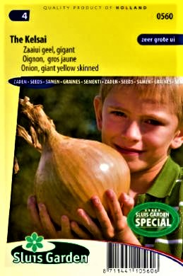 Valgomieji svogūnai (GIGANTAI) The Kelsae (lot. Allium cepa) 170s