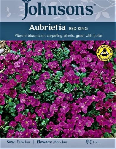 Darželinė aubretė Red King (lot. Aubrieta cultorum) 200s