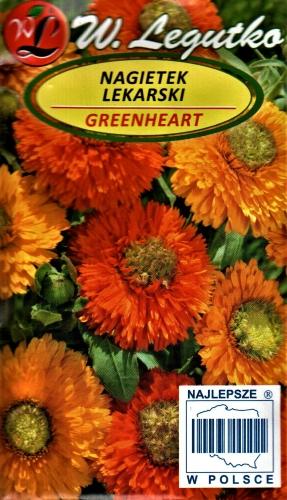 Vaistinės medetkos Greenheart (lot. Calendula officinalis) Sėklų 2g