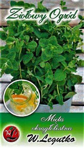 Apskritalapės mėtos (lot. Mentha rotundifolia) Sėklų 0,1g