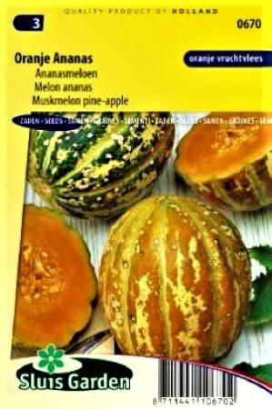 Sėjamieji melionai Oranje Ananas ( Cucumis melo)  9s