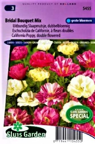 Geltonžiedė ešolcija Bridal Bouquet (lot. Eschscholzia californica) 200s